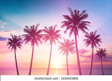 世界観光の日のコンセプト:夕日に対するココナッツの木のシルエット