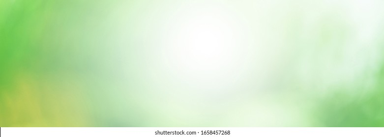 Las hojas verdes se desdibujan y la luz borrosa bokeh. Fondo abstracto y hermoso telón de fondo.