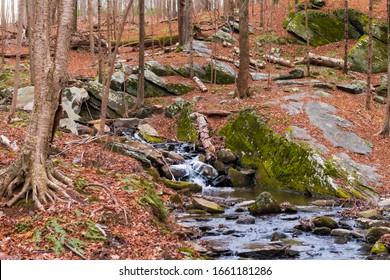 Eine horizontale Fotografie eines Baches mit mehreren kleinen Wasserfällen