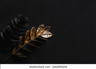 Black plants and golden plants with top view on black background.Minimalist black 2020 Creative Trend.