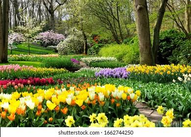Coloridas flores de primavera en los hermosos jardines de Keukenhof, Holanda