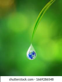 International Earth Day Concept, Erde in Wassertropfenreflexion unter kleinen grünen Blättern, Elemente dieses Bildes von der NASA geliefert