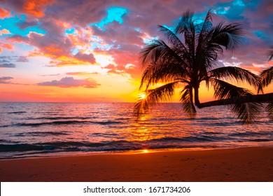 Silueta de palmeras Hermosa puesta de sol en el fondo de la playa del mar tropical para viajar en vacaciones, relajarse tiempo