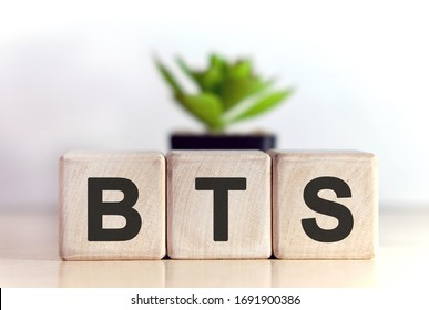 BTS concept on wooden cubes and flower in a pot in the background
