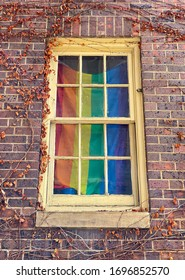 Closeup of an old, weathered window on a brick building overgrown with vines and a rainbow flag hanging in the window.