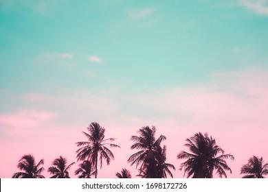 Palmeres tropicals de cocoter al capvespre, flamarades del cel i fons de natura bokeh.