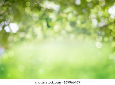 Fondo bio verde fresco y saludable con follaje borroso abstracto y luz solar brillante de verano y un espacio de copia central para su texto o anuncio