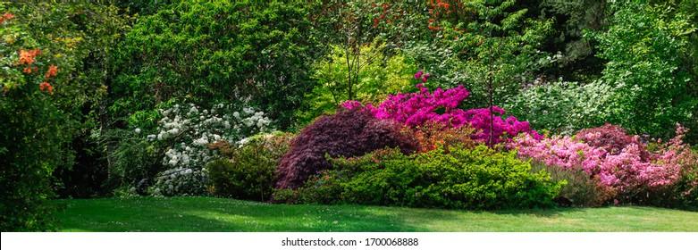 春の間に咲く木、ウェールズ、英国、バナーサイズの美しい庭園