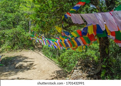 Colorful holy prayer flages are hung on the steep road inside the forest towards Tiger's nest