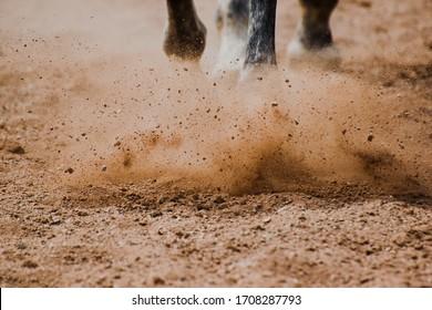 Pferdehufe im Sand laufen lassen