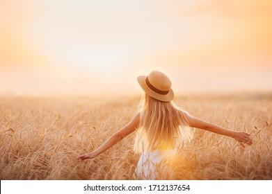 麦畑の少女が夕日を見る