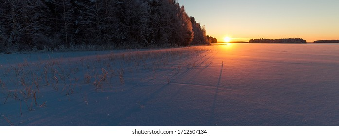 sun setting over a frozen lake casting shadows on the ice. Wooded islands in the horizon and a forest on the side. Dead water plants on the left cast shadows on the ice and the snow.