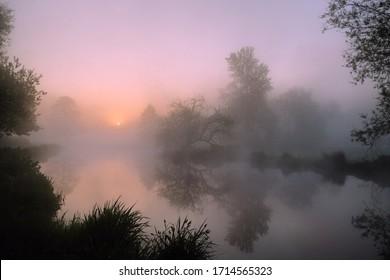 霧深いウェイ川、サリー、イギリスの日の出のピンクの空