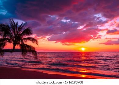 Hermosa playa tropical al atardecer con palmeras y cielo rosa para viajes y vacaciones en tiempo de relajación de vacaciones