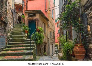 Alte italienische Straße in der Stadt Vernazza mit mittelalterlichen Treppen und Töpfen mit grünen Pflanzen mit niemandem an der Küste der Cinque Terre, Ligurien, Italien, Europa
