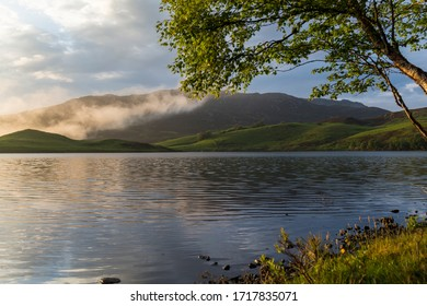 landscape of a lake in which small ripples form due to the wind, in the background you can see hills covered by green grass and on one side the branch of a tree