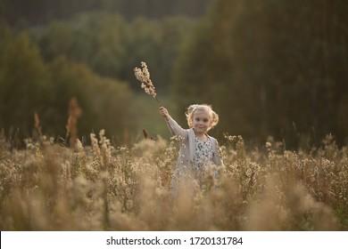 ふわふわの枝のある畑を歩いている少女。セレクティブフォーカスのある画像。