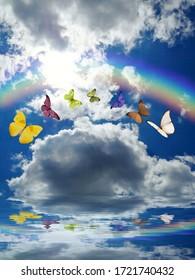海の反射で蝶と虹と自然の背景