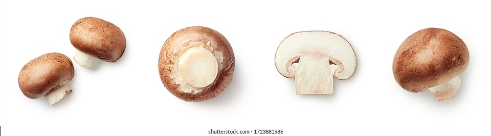 白い背景で隔離の新鮮な全体とスライスしたシャンピニオンキノコのセットです。上面図