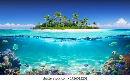 Tropische Insel und Korallenriff - geteilte Ansicht mit Wasserlinie