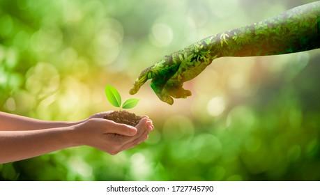 medio ambiente Día de la Tierra Manos de la naturaleza. Manos de niña sosteniendo árboles que crecen sobre fondo verde bokeh. Concepto de ecología y naturaleza.