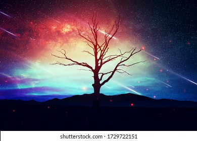 Árbol solitario sobre un fondo natural rosa azul, en una noche estrellada con estrellas cayendo del cielo, fondo de fantasía del día de San Valentín, ilustración de trama de diseño artístico.