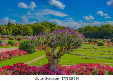 Erstaunlicher romantischer Schlossgarten in Frankreich