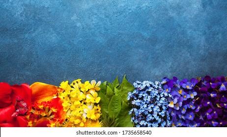 色のスペクトル、花の虹の背景。テキスト用のスペース