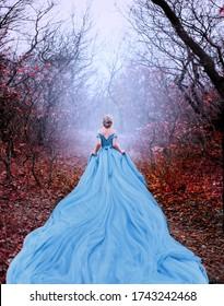 アートワーク写真秋の自然霧神秘的な森の木の美しいシルエットの女性の王女シンデレラ。豪華で壮大なロイヤルブルーのドレスは非常に長い列車です。画像華やかな女神バックおとぎ話の女王