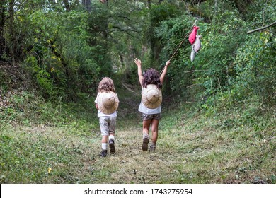 kids scouts in the forest