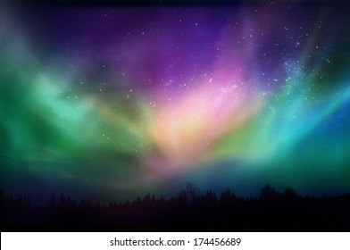 Multicolored northern lights (Aurora borealis)on Canadian forest
