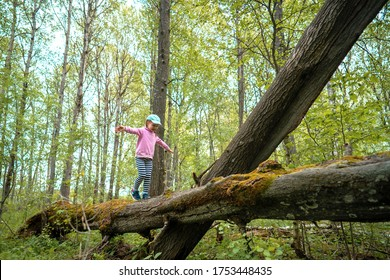 little brave girl in the spring forest walking on a log. A child walks on a log in the forest, from the side.Hiking, camping, family outdoor activities.