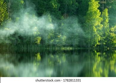 その栄光の春!森の土手と新鮮な葉の白樺の木がある美しい川。霧が帯状に水面を這う、日光の下での鮮やかなもや、穏やかな水面での反射、ゲームフィッシュ