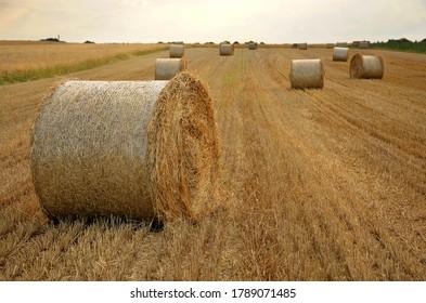 ländliche Landschaft ländliche Industrie Heuballen auf dem Feld