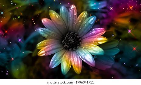 Colorful daisy. Rainbow flower background. Rainbow abstract art. Rainbow floral background. Surreal abstract. Colorful glittering background. Colorful sparkles. Multicolor flower backdrop.