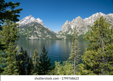 Beautiful sunny summer day view of Jenny Lake in Grand Teton National Park