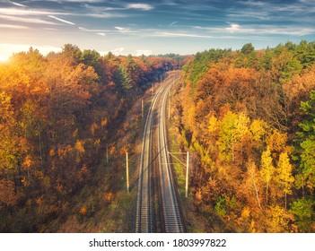 日没時の秋の森の美しい鉄道の空撮。鉄道駅のある産業景観、雲のある青い空、色とりどりのオレンジの葉のある木々。秋の田園鉄道の上面図