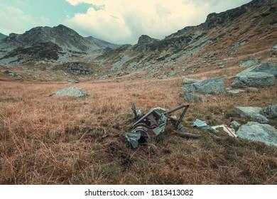 山での第二次世界大戦での飛行機の墜落からの部品