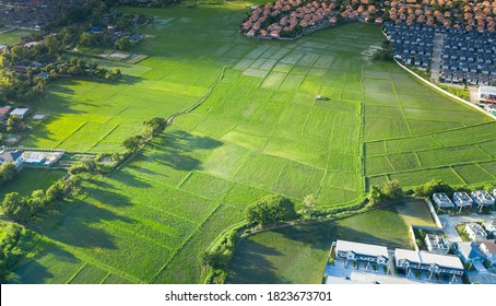 耕作地および土地区画または土地区画。緑の野原、農作物、尾根の空撮で構成されています。それは、耕作、所有、販売、開発、賃貸、購入、または投資のための土地です。