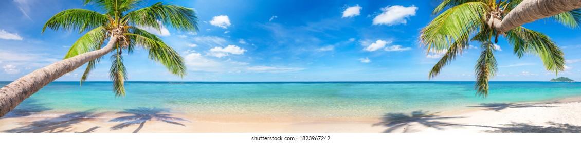 Panorama de la playa tropical con palmeras de coco