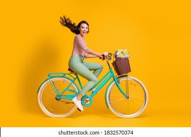In voller Länge Körpergröße Seitenprofil Foto von fröhlichen Mädchen reiten blau Fahrrad mit Korb von Blumen isoliert auf lebendigen gelben Farbe Hintergrund