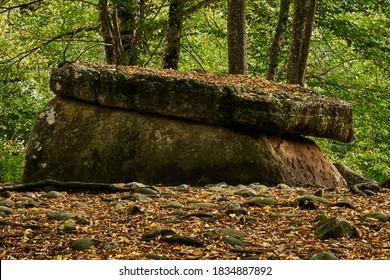 夕方の光の中で秋の果樹園の木々の間の古代巨石ドルメン