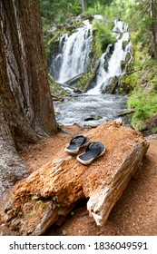 Black and white flip-flops laying on a decomposing log next to National Creek Falls in the Rogue River - Siskiyou National Forest in the Southern Oregon Cascades.