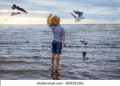 Een 4-jarige jongen (jongen) met krullend haar in een gestreept zeemansvest voedt meeuwen op het strand. Hij springt alsof hij danst en staat op zijn tenen als balletdanseres. Achteraanzicht. Bewolkt weer, zonsondergang.