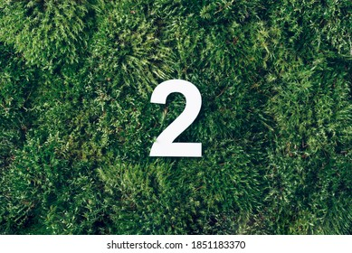 Ecology, zero waste. Green grass and digit two 2. Birthday greeting card. Anniversary concept. Top view. Copy space. White numeral over eco moss background. Numerical digit