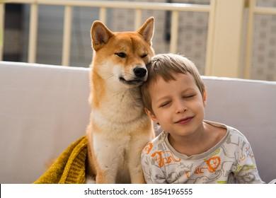 2人の抱き締める親友の肖像画-男の子と彼の柴犬は屋根のソファに座っています。友情、愛と関係の概念