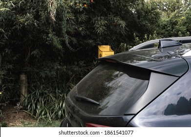 Gray truck trunk black tones from above with background of bushes and bamboo flowers and yellow trash can