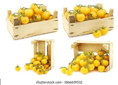 """verse nederlandse gele """"smakelijke tom"""" tomaten op de wijnstok in een houten kist op een witte achtergrond"""