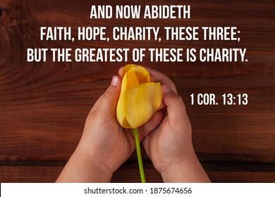 Bibelzitate für Gläubige. Inspirierende christliche Vers Kinderhände halten gelbe Tulpenblume. Liebe, Menschen kümmern sich um Kinder Spenden Wohltätigkeit, Gnade Unterstützung Wohlfahrtskonzept. Dienstag Grußkarte geben.