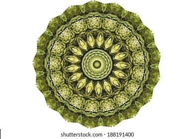 丸い緑色の万華鏡のようなパターン